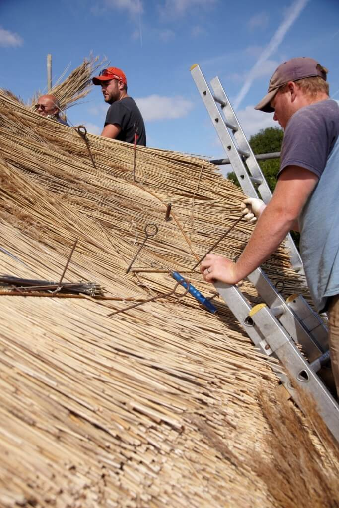 roof thatching